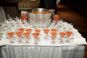 punch party sheraton