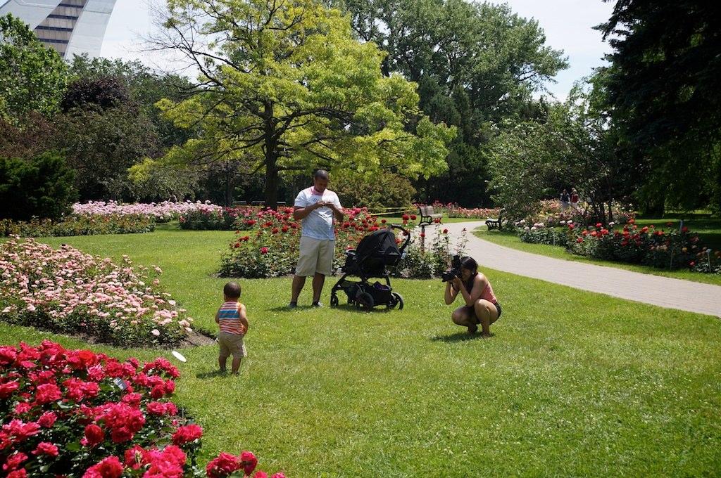 Photographe d un jour avec betsabeth et issaul for Jardin botanique montreal tarif