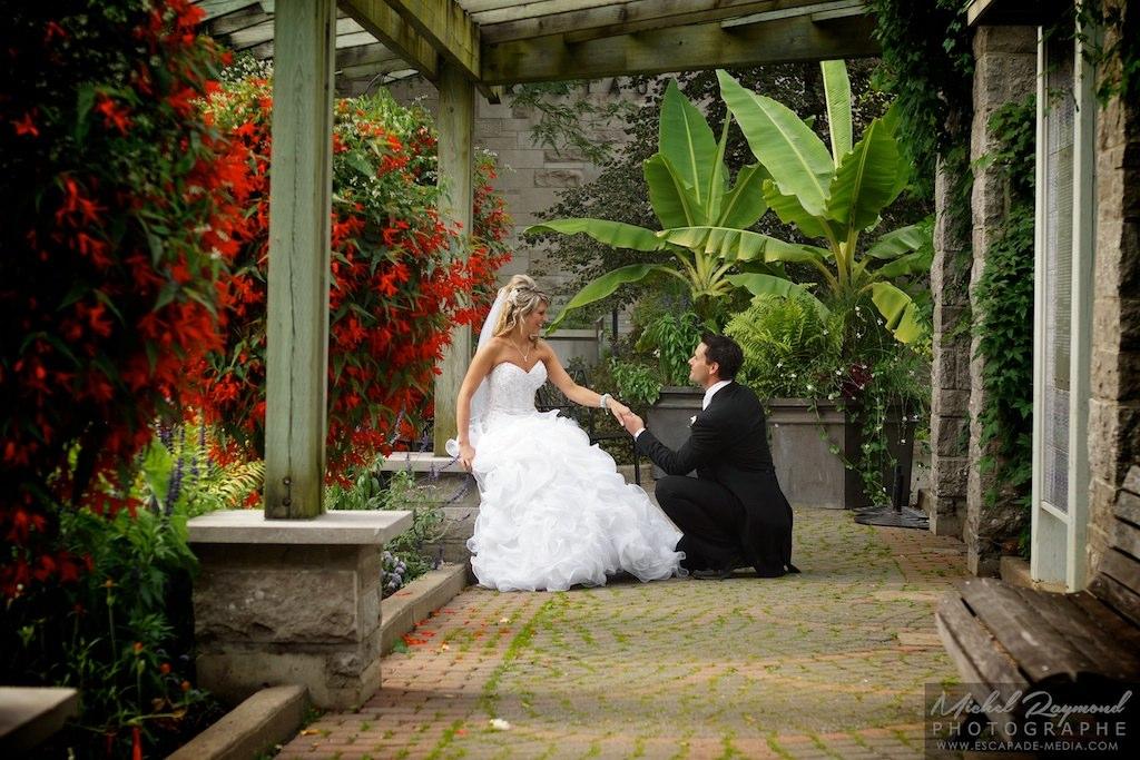 photo,mariage,jardin,avec,bananiers